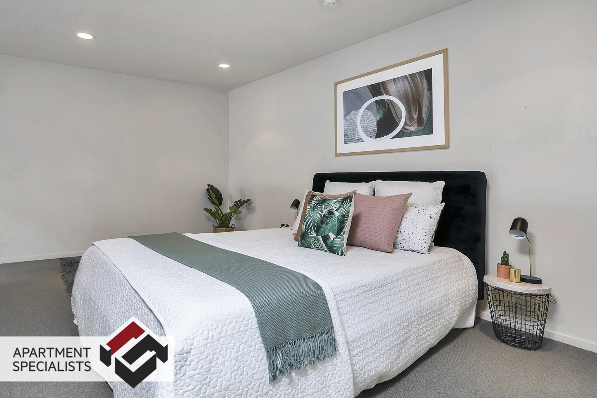 4 | 5 Charlotte Street, Eden Terrace | Apartment Specialists